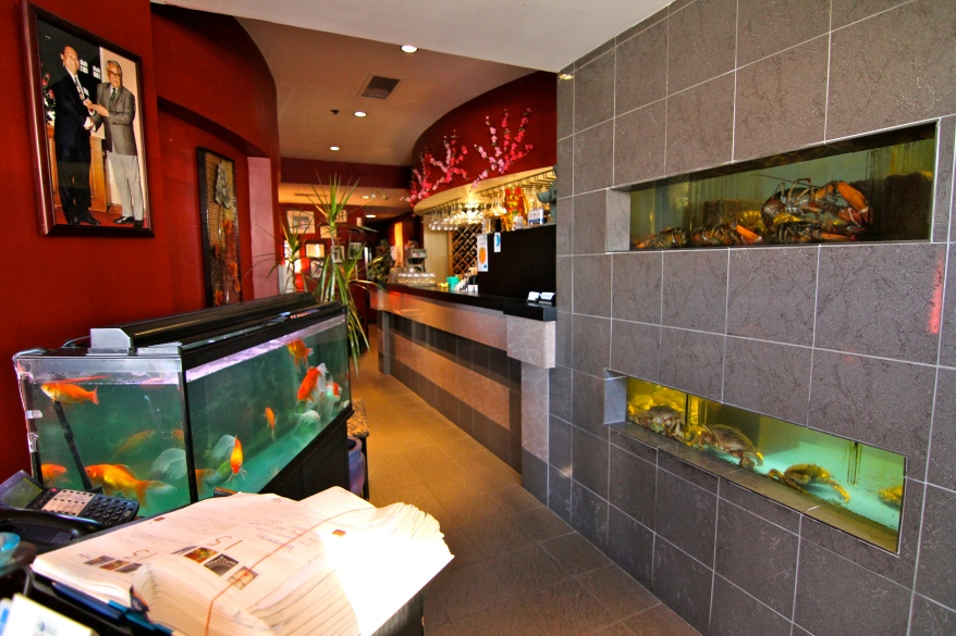 Szechuan Chongqing Seafood Restaurant Interior.Photo Credit Shark Truth