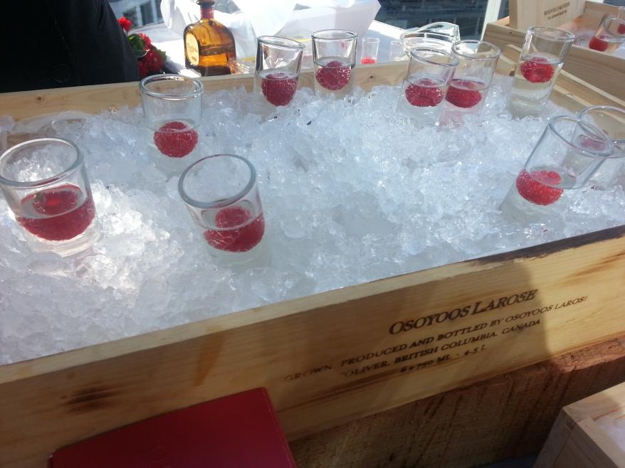 Tequila Shots - ARC Launch