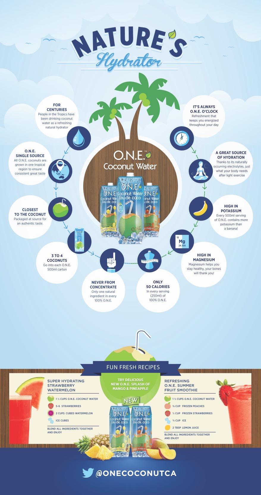 O.N.E_Infographic_STATIC