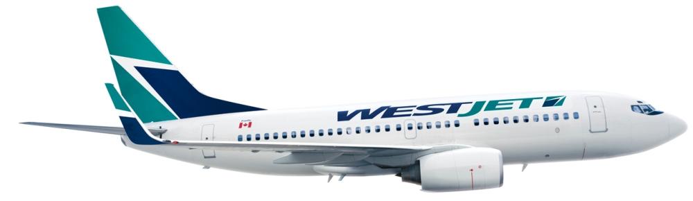 WJ 700 winglet rght 4in 4c[1]