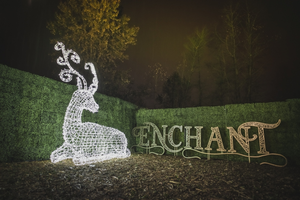 enchant-oct-30-2016-5388