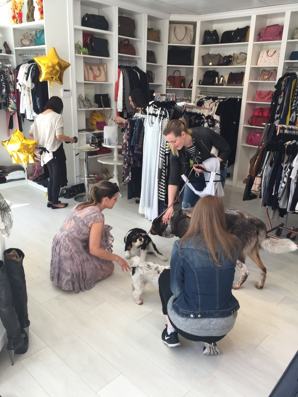 Mine & Yours Dog and Fashion Party – Lifestyle, Food and ...